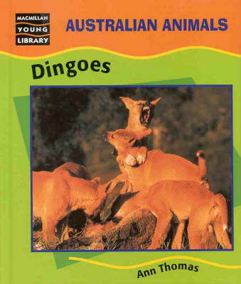 Dingoes by Ann Thomas image
