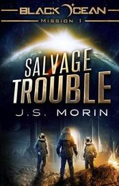 Salvage Trouble by J S Morin