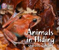 Animals in Hiding by Charlotte Guillain