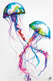 Marc Allante Maxi Poster - Jellyfish (862)