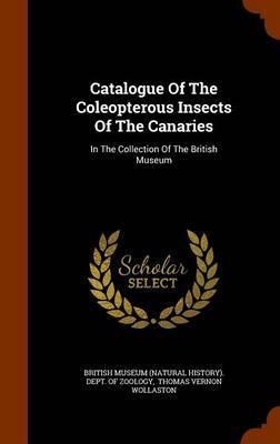 Catalogue of the Coleopterous Insects of the Canaries image
