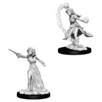Pathfinder Deep Cuts: Unpainted Miniature Figures - Female Human Wizard