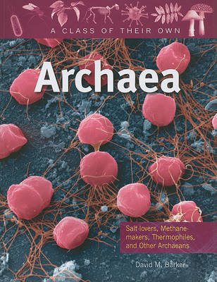 Archaea by David M Barker image