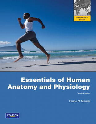 Essentials of Human Anatomy and Physiology 10th Edition   Elaine N ...