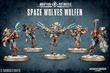 Warhammer 40,000 Space Wolves Wulfen