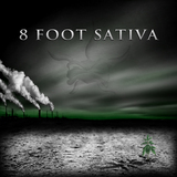 The Shadow Masters by 8 Foot Sativa