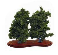 Mature Ash Trees x 2