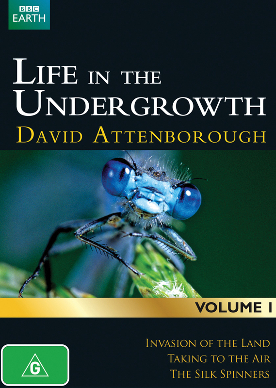David Attenborough's Life in the Undergrowth - Volume 1 on DVD