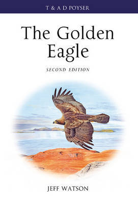The Golden Eagle by Jeff Watson