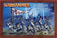 Warhammer High Elf Dragon Princes of Caledor