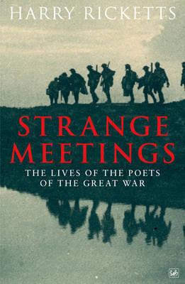 Strange Meetings by Harry Ricketts image