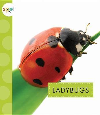 Ladybugs by Nessa Black