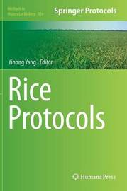 Rice Protocols
