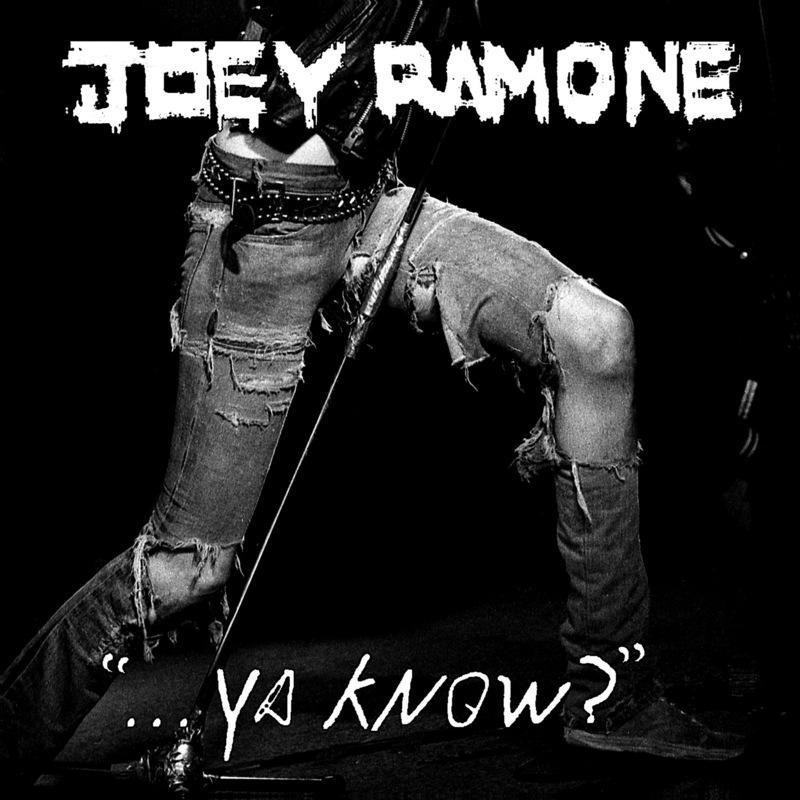 Ya Know? by Joey Ramone image