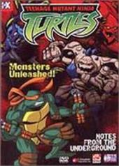 Teenage Mutant Ninja Turtles - Vol. 05: Notes From The Underground on DVD