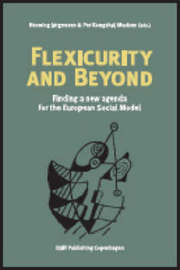 Flexicurity and Beyond image