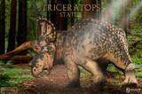 Dinosauria - Triceratops Statue