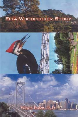 Effa Woodpecker Story by Ph.D. Wilson Essien