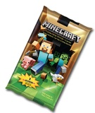 Minecraft Sticker Cards
