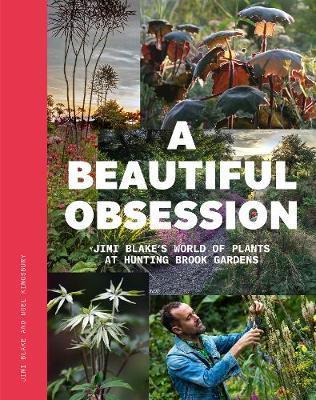 A Beautiful Obsession by Jimi Blake