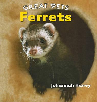 Ferrets by Johannah Haney