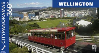 Wellington by Helga Neubauer
