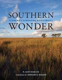 Southern Wonder by R Scot Duncan