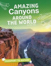 Amazing Canyons Around the World by Gail Terp