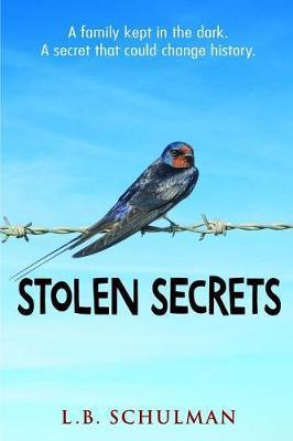 Stolen Secrets by L. B. Schulman image