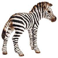 Schleich: Zebra foal