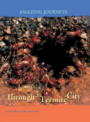 Through a Termite City by Carole Telford image