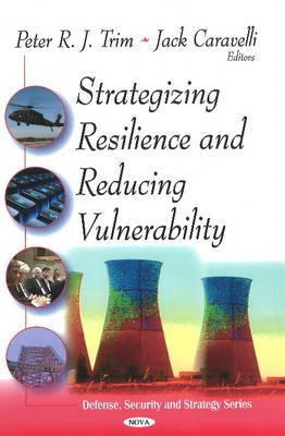 Strategizing Resilence & Reducing Vulnerability
