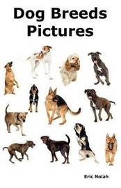 Dog Breeds Pictures by Eric Nolah