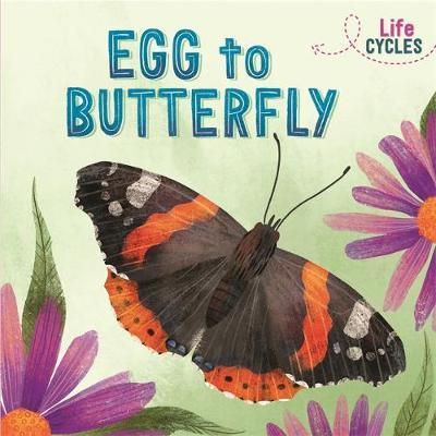 Life Cycles: Egg to Butterfly by Rachel Tonkin