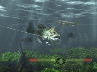 Rapala Fishing Frenzy for PS3 image