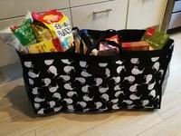 Trunkster Boot Organiser Grocery Tote - Kiwi