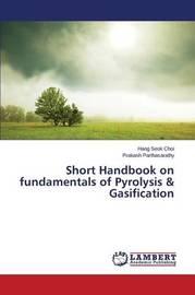 Short Handbook on Fundamentals of Pyrolysis & Gasification by Choi Hang Seok