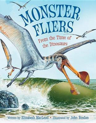 Monster Fliers: From the Time of the Dinosaurs by Elizabeth MacLeod image