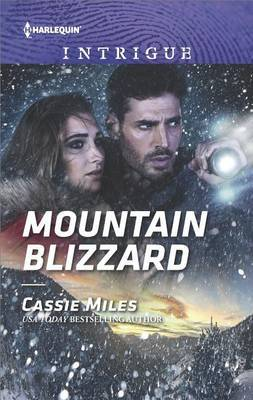 Mountain Blizzard by Cassie Miles image