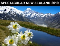 Spectacular New Zealand 2019 Horizontal Wall Calendar