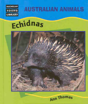 Echidnas by Ann Thomas image