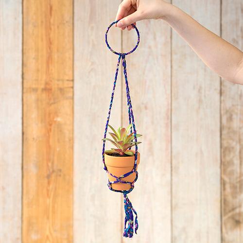 Natural Life: Hanging Succulent - Purple Hanger
