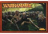 Warhammer Vampire Counts Zombies Regiments