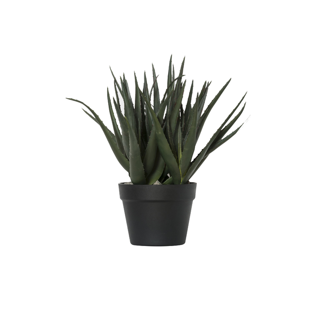 General Eclectic: Artificial Plant - Large Aloe