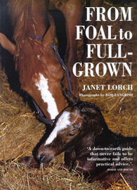 From Foal to Full-grown by Janet Lorch image