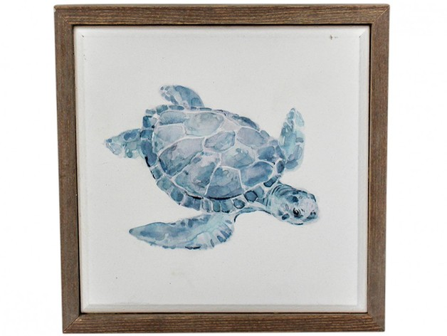 LaVida: Framed Canvas (Turtle)