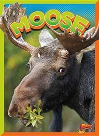 Moose by Gail Terp