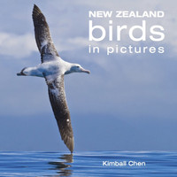 New Zealand Birds in Pictures by Kimball Chen