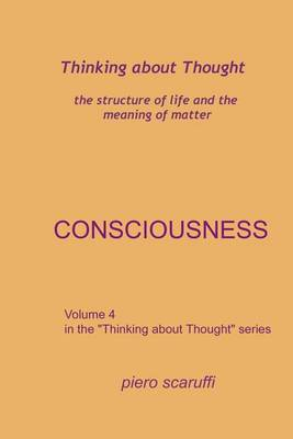Thinking about Thought 4 - Consciousness by Piero Scaruffi image