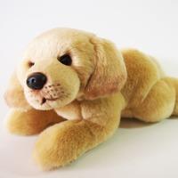 Dog: Bailey Yellow Labrador 25Cm